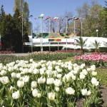 "32-то издание на ""Флора Бургас"" отваря врати на 29 април"