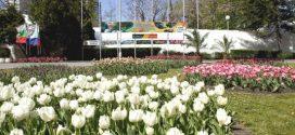 """Националната изложба на цветя """"Флора Бургас"""" от 29 април"""