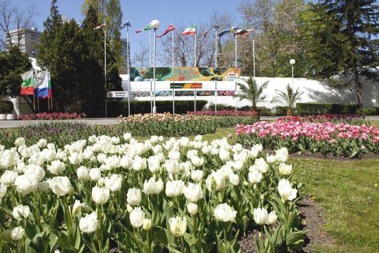 """Флора Бургас 2021"" от 8 до 16 май"