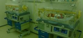 Поръчайте календар с недоносени бебета и помогнете да пораснат