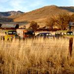 За собствениците и ползвателите на земеделски земи в землищата на община Поморие
