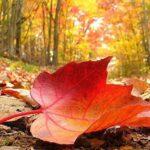 Как да се справим с есенната депресия