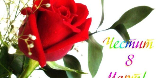 8 март – Международен ден на жената