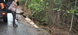Събират информация за констатирани нерегламентирани зауствания в реки, за дъждовните канализации и в Черно море