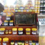 Фестивалът на меда в Поморие е открит