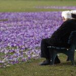 България сред най-застаряващите държави в ЕС