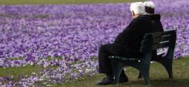 От 1 октомври минималната пенсия става 200 лева