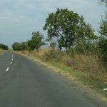 Реконструкция на пътната настилка и изграждане на велоалея  на пътя Каменар – Поморие