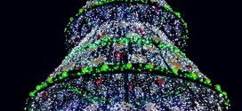 Грейнаха светлините на коледната елха в Поморие