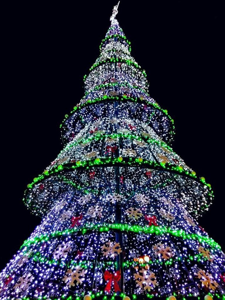Коледно-Новогодишна програма