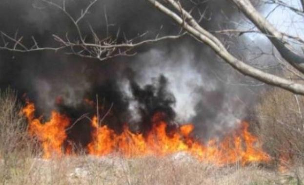 """Затвориха AM """"Тракия"""" в двете посоки край Камено заради пожар"""