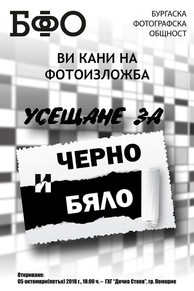 43047850_1156213614531685_1138951831418830848_n