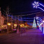 Община Поморие отменя планираната коледна програма, но елхата ще заблести на 6.12.