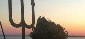 Посрещане на Нептун на 1 август
