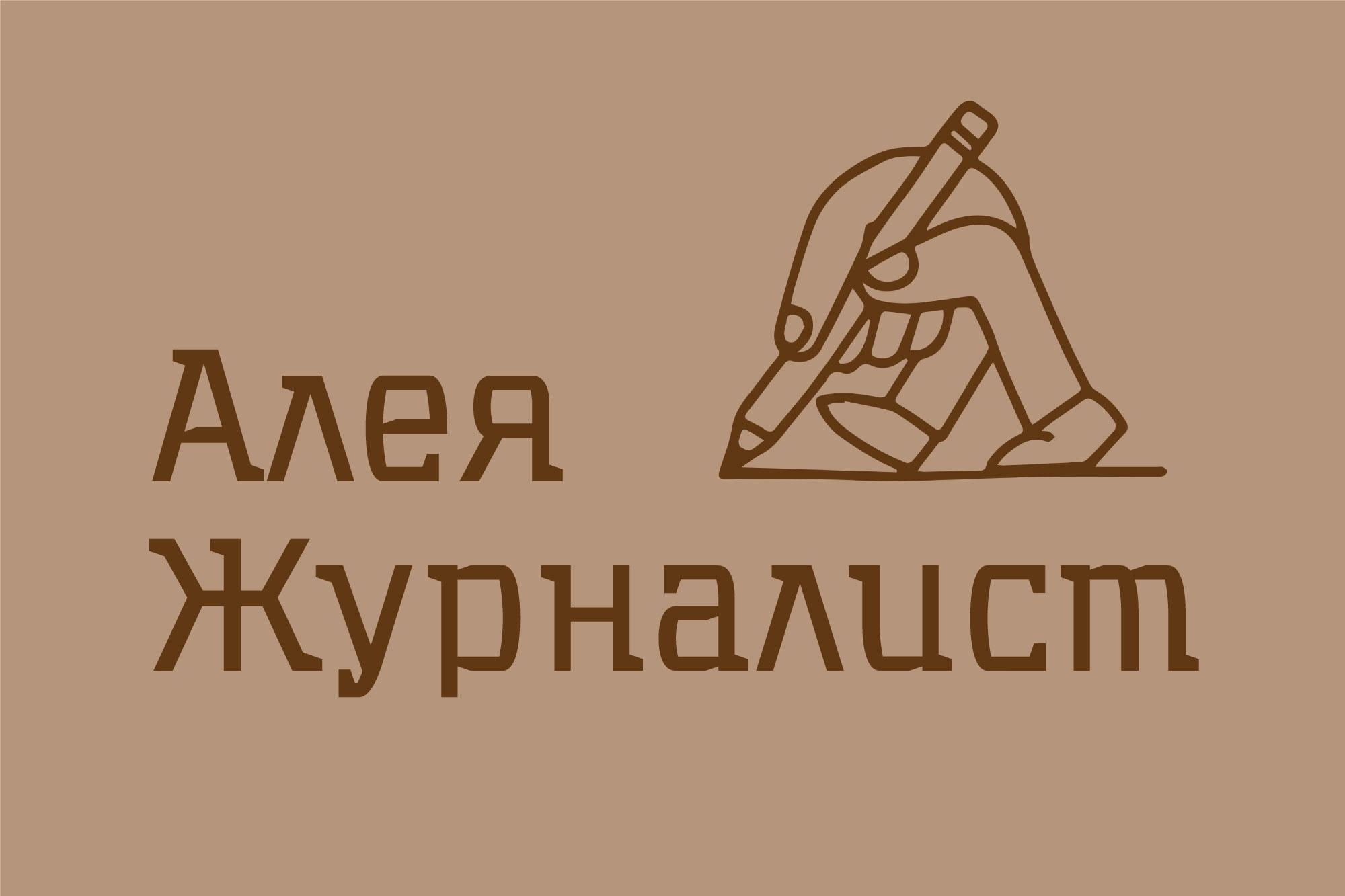 aleya-jurnalist