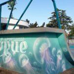 Мечтата на поморийските скейтбордисти е факт