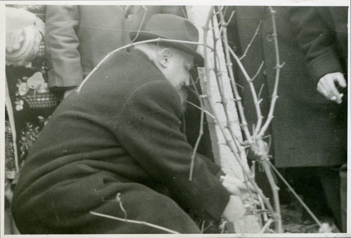 1967-14-02