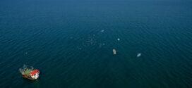 51 състезатели участваха в първия плувен маратон в Поморие