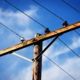 На 22.10.т.г. около 06.30 ч. в Районно управление на МВР – Поморие е получено съобщение за извършена кражба на около 160 м. меден меден проводник от уличното осветление на село...