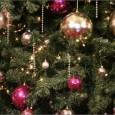 Учени изчислиха кога сме най-щастливи на Коледа. Пълното щастие в празничния ден настъпва точно в 13:55 ч. Изследването показало, че повечето хора са силно притеснени сутринта на 25 декември заради...