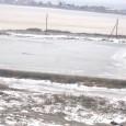 Електронното новинарско издание Gramofona.com публикува информация във връзка с изграждането на остров в Поморийското езеро и реакциите на местни жители. Същевременно от няколко дни в социалната мрежа Фейсбук се появи...
