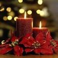 Програма на Община Поморие по случай настъпването на Коледните и Новогодишни празници: На 08.12.2010 г. от 17.30 ч. на централната улица пред офиса на M–Tel празниците ще се открият със...