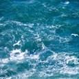 """На 22.08.т.г. около 14.42 ч. в Пето Районно управление """"Полиция"""" – Бургас е получено съобщение за това, че в неохраняемата зона на Северния бургаски плаж, се е удавил 15 годишния..."""