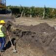"""""""Фолксваген Голф"""" падна в трапа, изкопан за разширението на пътя Сарафово – Поморие, съобщи Burgasnews, позовавайки се на очевидец на катастрофата. Инцидентът е станал малко преди обед в района на..."""