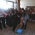 """С ритуално измиване на ръце и богата празнична програма жени от град Каблешково честваха Бабин ден. Те бяха приятно изненадани от поздравленията на децата от ОДЗ """"Радост"""" и Детски танцов..."""