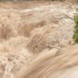 Кметът на Община Кюстендил Петър Паунов обяви бедствено положение. Река Бистрица е на път да прелее при Долно село, каза той. От областното пътно управление съобщиха, че техни екипи са...